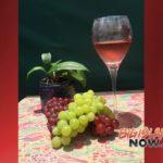 Volcano Art Center to Host 'Wine & Watercolor' Workshop