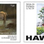Winning Artists Named in Wildlife Conservation Stamp Contest