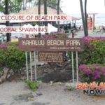 Partial Closure of Beach Park Due to Coral Spawning