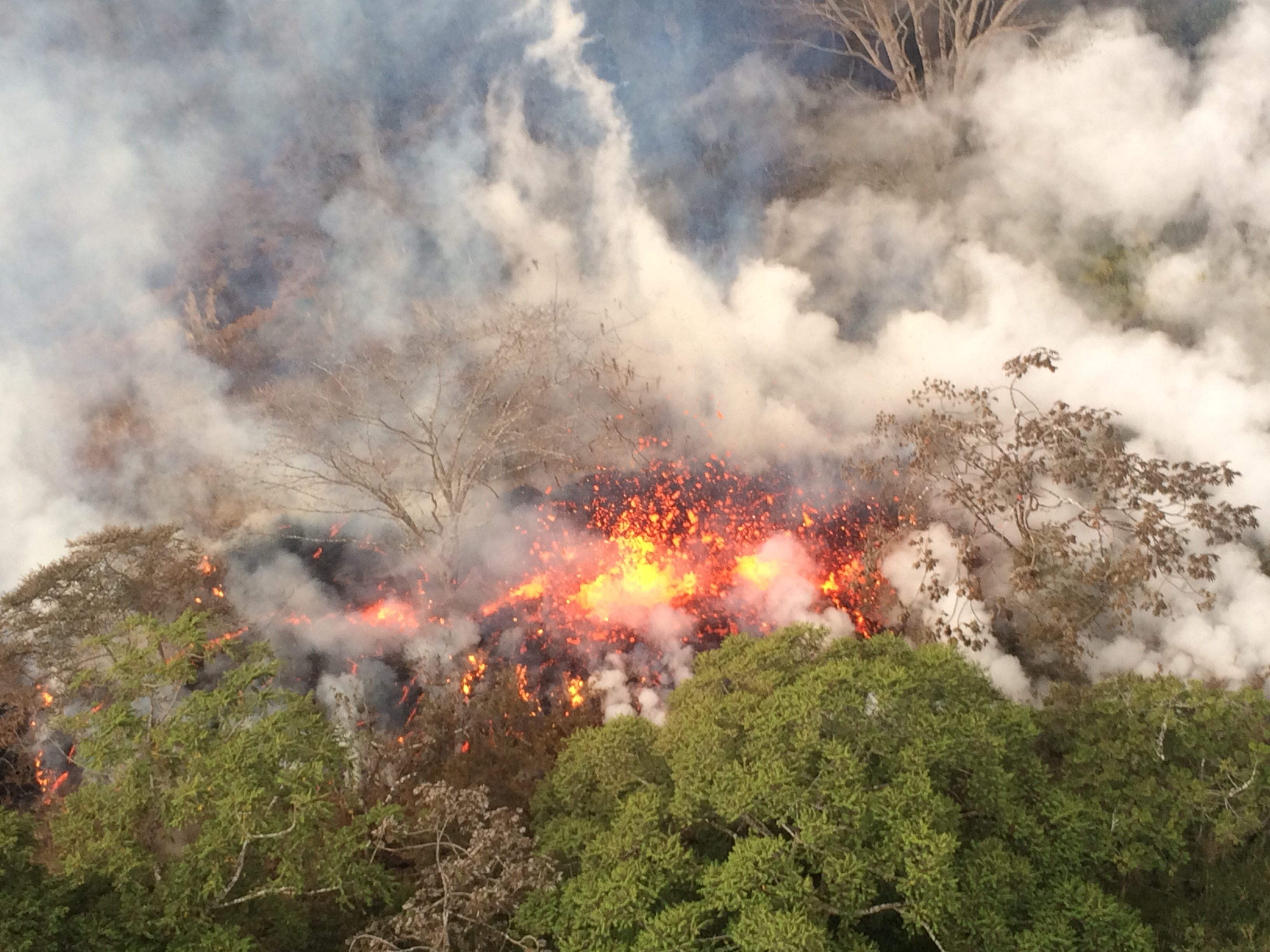 Hawaii volcano erupts from summit, shooting ash