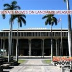 Hawai'i Senate Moves on Landmark Measures