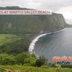 Man Dies at Waipi'o Valley Beach