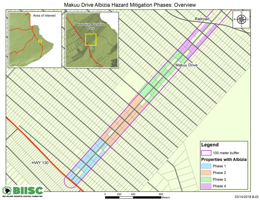 Hazardous Albizia Removal Begins June 18