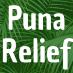 Puna Micro-Shelter Project, Volunteers Needed