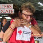 Kea'au & Church Shelter Consolidate & Relocate