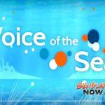 Award-winning TV Series Explores Ocean Issues in Hawai'i
