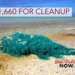 Hawai'i to Receive Over $230,000 for Marine Debris Cleanup