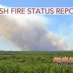 Brush Fire Continues Near Saddle Road