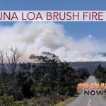 Fire Crews Working to Extinguish Mauna Loa Brush Fire