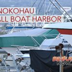 Honokōhau Boat Owners Should Contact New Operator