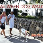 Howl'ween Dog Walks Planned for Hilo & Kona
