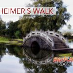 Annual Hilo Walk to End Alzheimer's