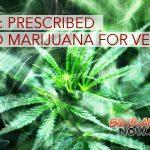 Legislators Introduce Bill to Allow Veterans Prescribed Med Marijuana