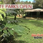 State Forest & Park Status After TS Olivia