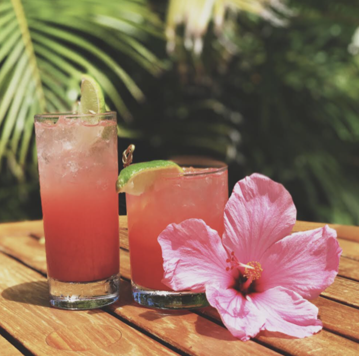Pink Drinks Honor Cancer Awareness Month | Big Island Now on