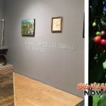 Donkey Mill Art Center to Host Art Exhibit and Cultural Programs