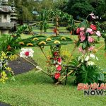 Celebrations 18 Project Showcases Hawai'i Flowers and Foliage