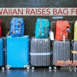 Hawaiian Airlines Raises North America Bag Fees