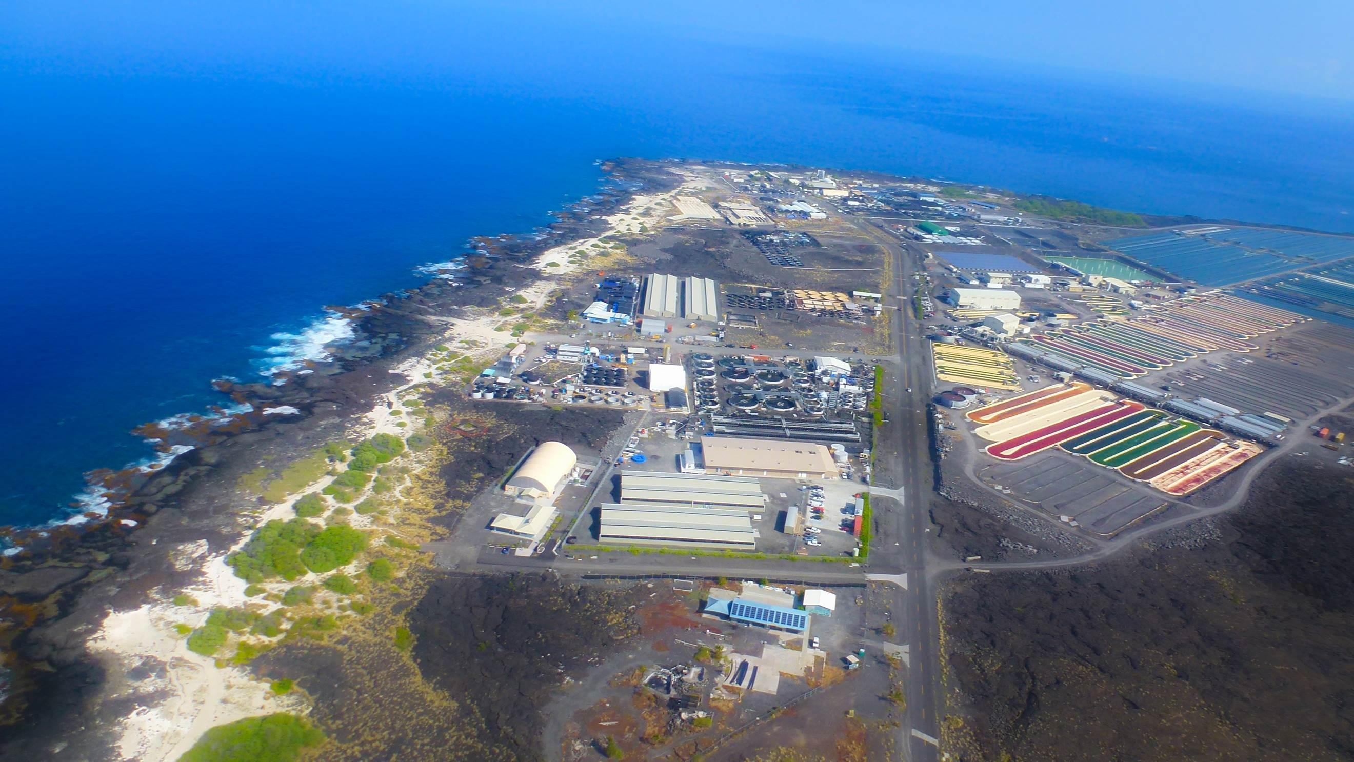 hawaii aquaculture technology park science island ocean shrimp farms bigislandnow strategic partnership expand growth global unique farm university companies