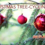 Tree-cycling Returns This Holiday Season