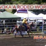 Honoka'a Rodeo Arena Closing for Restoration Work