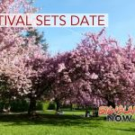 2019 Cherry Blossom Heritage Festival Sets Date