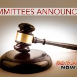Hawai'i County Council Committees Announced