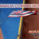 'Hikianalia' Expected to Come Home Next Week