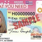 What You Need to Renew Your Driver License With Gold Star