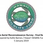 Puna Aerial Turtle Reconnaissance Survey Released