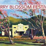Waimea Cherry Blossom Heritage Festival Schedule Set