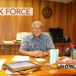 Task Force to Eliminate Traffic Deaths on Big Island Roads