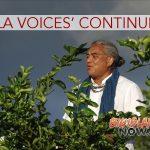 'Hula Voices' Continues at VAC