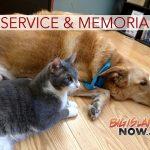 All Invited to Honoka'a Pet Appreciation & Memorial Service