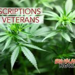 Legislators Reintroduce Bill Allowing VA to Prescribe Medical Marijuana
