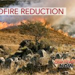WORKSHOP: How to Manage Wildfire Threats