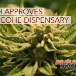 DOH Approves Opening of Medical Cannabis Dispensary in Kaneohe