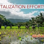 STUDY: Indigenous Hawai'i Ag Can Play Major Role Under Climate Change