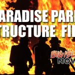 Paradise Park Structures Destroyed in Fire
