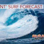 UPDATE 7: Giant Surf Warning, Wind & Small Craft Advisory