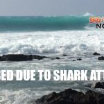 UPDATE: Woman Attacked by Shark Near A-Bay
