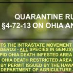 Merrie Monarch Travelers Must Be Aware of 'Ōhia Quarantine