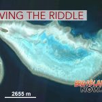 Solving the Riddle of Coral Reef Halos