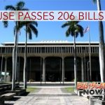 Hawai'i House Passes 206 Bills on Final Decking