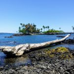 Logs & Debris Removed From Hilo Bay