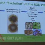 Research & Plan Revealed at First-Ever Rapid ʻŌhiʻa Death Symposium