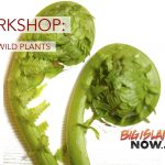 WORKSHOP: Edible Wild Plants