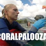 Rare Species Planted During Coralpalooza Celebration