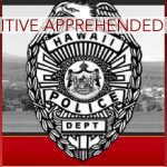 HPD Nabs Fugitive Wanted for Sex Assault