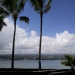 Rainfall Brings Harmful Bacterias to Hilo Bay, Study Shows